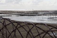 Ett konstverk på en strand i Nederländerna Royaltyfri Fotografi