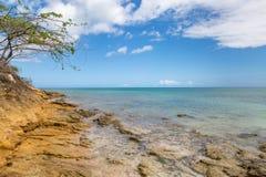 Ett kust- Antiguan landskap royaltyfria bilder