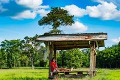 Ett kvinnasammanträde på en trähydda i risfältet royaltyfria bilder