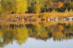 Ett landskap av hösten Fotografering för Bildbyråer