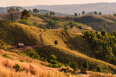 Ett landskapskott av Rolling Hills och torkar borsten på en slinga Royaltyfria Bilder