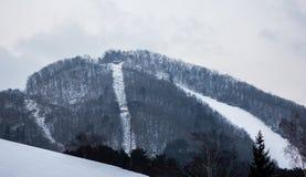 Ett landskapskott av ett snöig berg royaltyfri bild