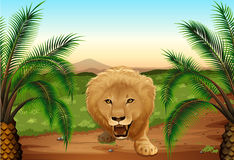 Ett lejon på djungeln stock illustrationer