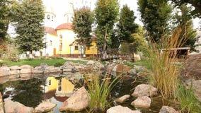 Ett litet damm i en parkera, dekorativt damm, dekorativ bro över ett damm, näckrors i vattnet, på bakgrunden arkivfilmer