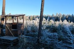 Ett litet jakttorn i en djupfryst kall skog arkivfoto
