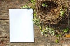 Ett litet rede för fågel` s ligger på en träbakgrund och ett vitt ark av papper för inskriften arkivbild