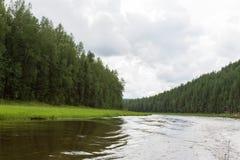 Ett litet skattskyldigt av den mycket stora floden Krasnoyarsk region, Ryssland Fotografering för Bildbyråer