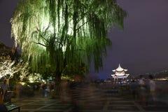 Ett ljus upp tårpilträd och pagod över Westlake Arkivfoton