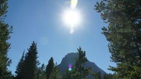 Ett maximum i glaciärnationalpark Arkivbilder