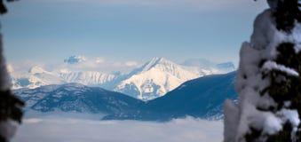 Ett maximum in i glaciärnationalpark och den Badrock kanjonen Royaltyfri Fotografi