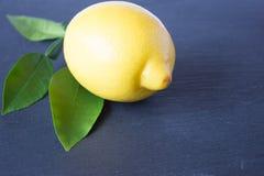 Ett moget citron och citronblad i closeup Arkivfoto