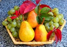 Ett moget saftigt päron ligger på en tabell, i bakgrunden en vas med druvor och päron royaltyfri foto