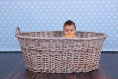 Ett mycket litet barn ?ter en torr bulle i en korg som v?vas fr?n ett vide- tr?d arkivbild