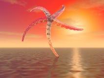Ett mystiskt objekt som liknar en enorm sjöstjärna Arkivfoto