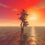 Ett mystiskt träd Arkivfoto