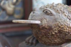 Ett mytiskt djur med en runda marmorerar disketten i munnen royaltyfri foto