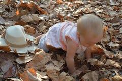Ett nätt behandla som ett barn krypning i höstsidor Royaltyfria Foton