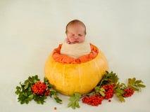 Ett nyfött behandla som ett barn i en orange pumpa- och bergaska höstidén och behandla som ett barn Arkivbilder