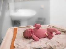 Ett nyfött behandla som ett barn flickaskrik ögonblick efter födelse Royaltyfria Foton