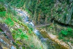 Ett oidentifierat folk som korsar en brindge och går i den naturliga gångbanaKarangahake klyftan, flod som igenom flödar Royaltyfri Bild