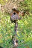 Ett ovanligt fågelhus Arkivbilder