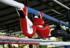 Ett par av boxninghandskar Royaltyfri Foto