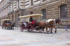 Ett par av den häst drog vagnen Royaltyfri Fotografi