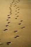 Ett par av fotspår Royaltyfria Bilder