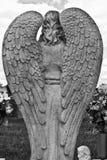 Ett par av granit Angel Wings Royaltyfria Foton