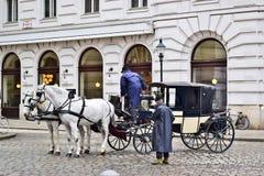 Ett par av hästar som exploateras till vagnen och chauffören, väntar på deras kunder arkivbilder