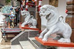 Ett par av stenen sned drakestatyer inom den Kataragama templet i Kandy i Sri Lanka Royaltyfri Bild