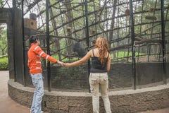 Ett par av unga vänner rymmer händer, medan tycka om ett besök till a Royaltyfria Foton