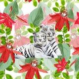 Ett par av vita tigrar och blommor Royaltyfri Fotografi