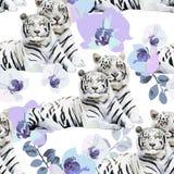 Ett par av vita tigrar och blommor Royaltyfri Bild
