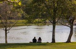 Ett par som stirrar på sjön på William Mason Regional Park royaltyfri bild