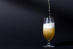 Ett perfekt kallt öl Arkivfoton