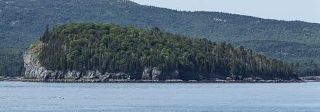 Ett piggsvinö Maine med det Cadillac berget i bakgrunden Royaltyfria Foton