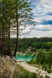 Ett pittoreskt ställe av det azura dammet och barrträd Fotografering för Bildbyråer
