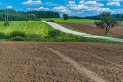 Ett plogat fält och en väg sikt för sommar för vinkelfältgräs wide Arkivfoton