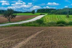 Ett plogat fält och en väg sikt för sommar för vinkelfältgräs wide Arkivbilder