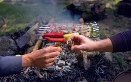 Ett populärt som grillas på brandköttmålet - grillade Shashlik - två manhänder som klirrar med bittra skott royaltyfri fotografi