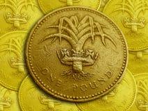 ett pund Royaltyfria Bilder