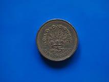 Ett pundGBP mynt, Förenade kungariket UK över blått Arkivbilder