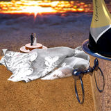 Ett rättvist gift par på stranden Champagne skyler, bakar ihop Royaltyfri Bild