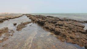 Ett Röda havetkrabbaslut upp av lager videofilmer