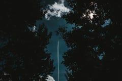 Ett raketflyg i himmelskottet till och med en skog arkivfoton