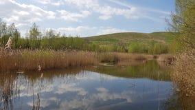 Ett recultivated landskap på de Arkenberge kullarna i nord av Ber arkivfoton