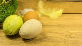 Ett rede med easter ägg i gräsplan royaltyfri foto