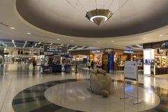 Ett shoppa område av D-portarna på den McCarran flygplatsen i Las Vegas, Arkivbild