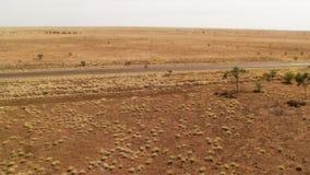 Ett skott av en lång väg och träd på land stock video
